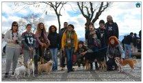 I Visita Guiada por el Albaycín con Mascotas