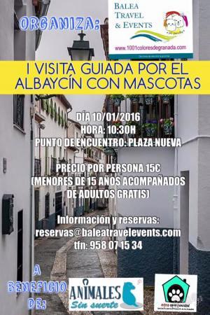 I visita guiada por el Albaycín con mascotas Granada